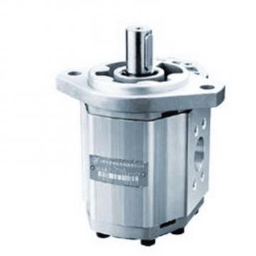 CBW-F310-CFP Hydraulic CBW Series Gear Pump
